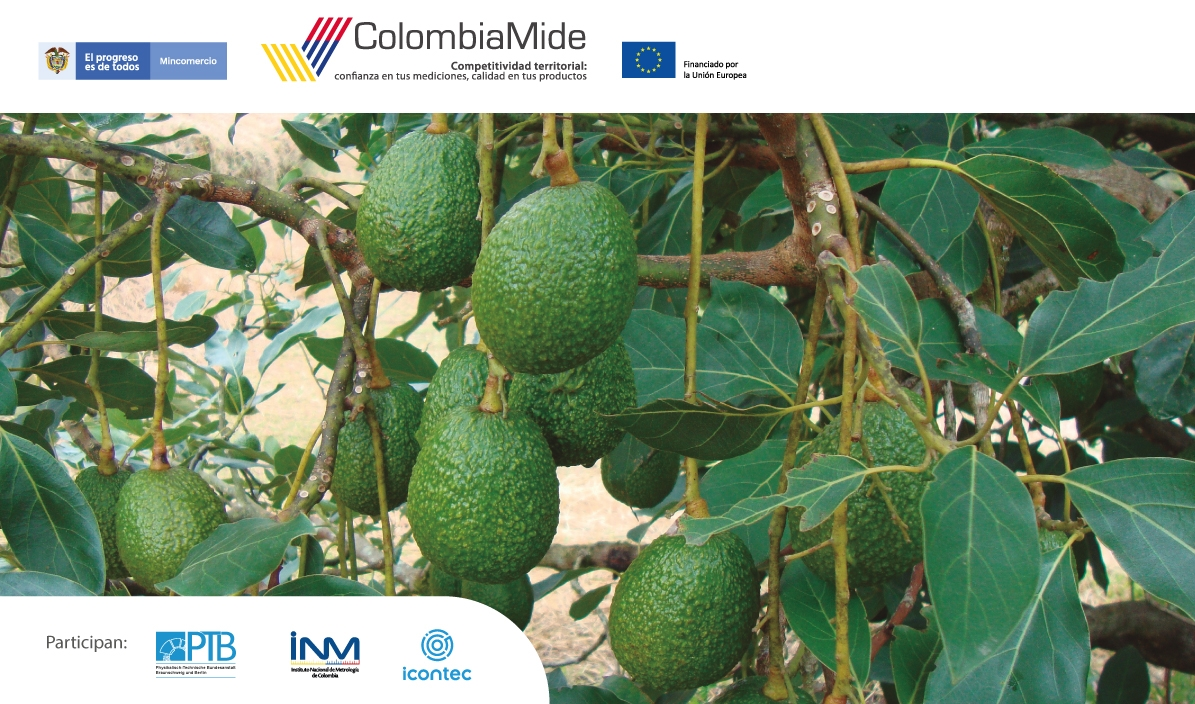 ColombiaMide: Apertura Protocolo Ensayo de Aptitud para la determinación de residuos de plaguicidas en aguacate Hass (Persea americana)